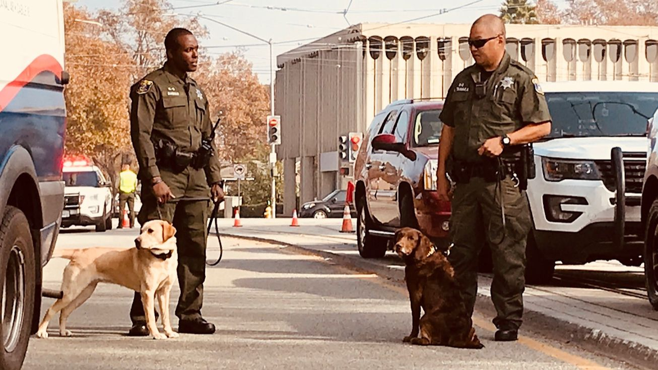 k9 officers and handlers