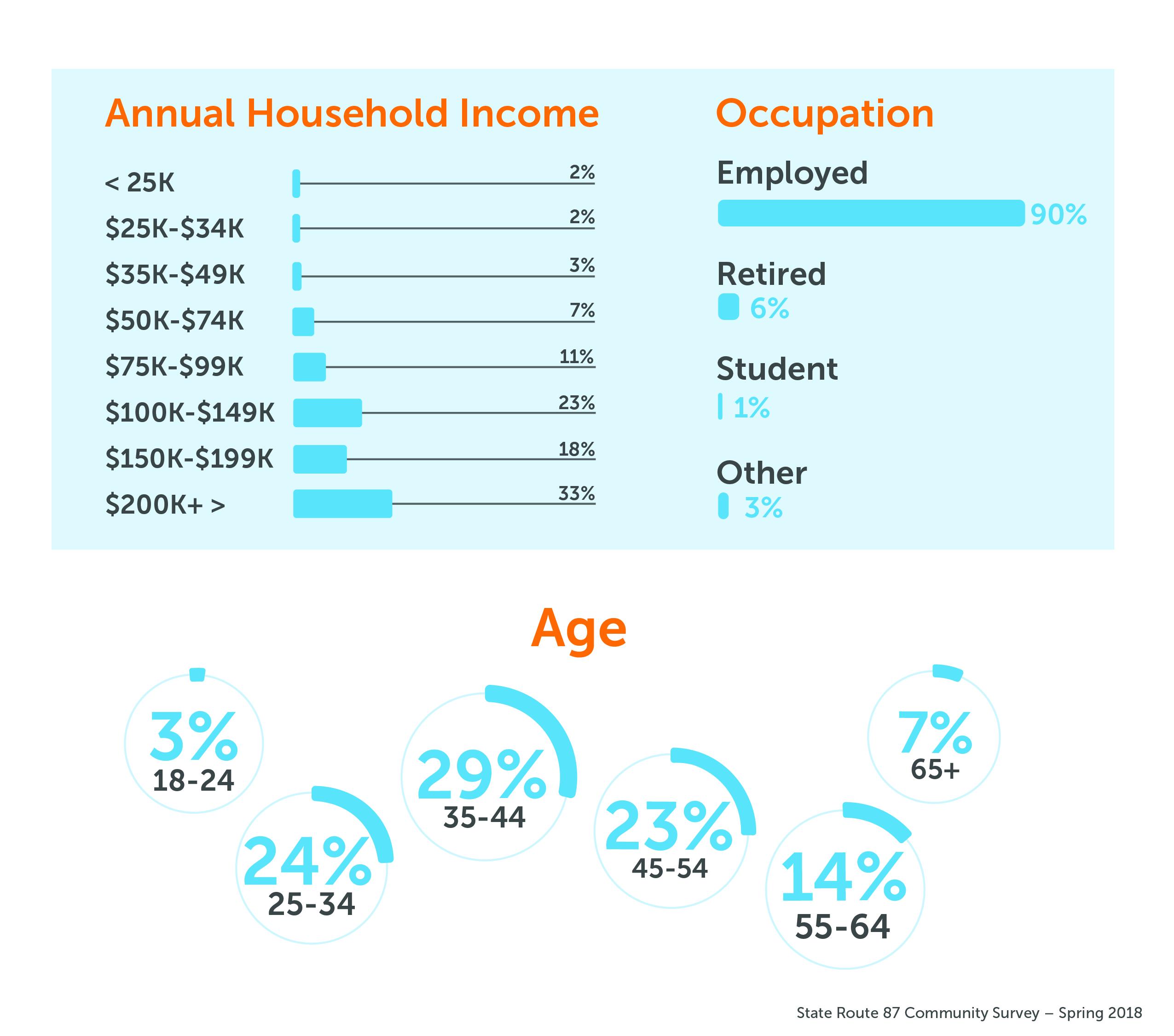 SR87 Survey Demographics