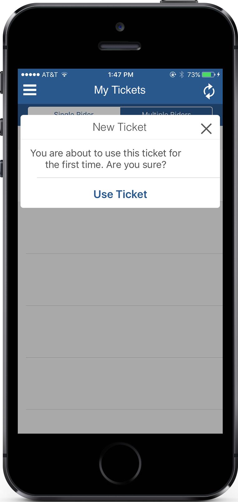 EZfare Use Ticket Screen